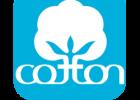 cotton-button-icon